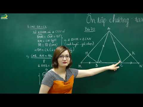 Toán Lớp 7-Ôn tập Tam giác chuyên đề các trường hợp bằng nhau của tam giác, tam giác vuông T1