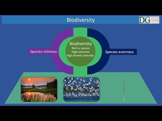 David Game Medical Programme -Biodiversity