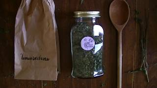 Quiet Creations Ep. 3 | Drying Herbs For Tea