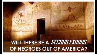 """WILL THERE BE A """"SECOND EXODUS"""" THAT COMES OUT OF ALL THIS CHAOS, MADNESS AND CONFUSION?"""
