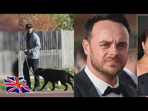 Ant McPartlin and estranged wife to battle for custody over dog  The TV presenter 42 - who announ