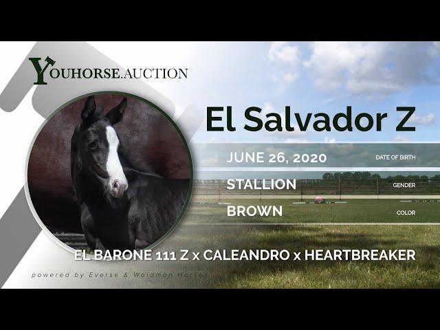 El Salvador Z
