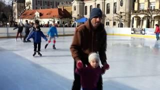 preview picture of video 'Pszczyna 2014 - Zamek, zabytkowy park, rynek i lodowisko'
