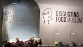 Get your vomit bag ready! Disgusting Food Museum opens in Sweden