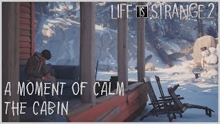 A Moment of Calm - The Cabin