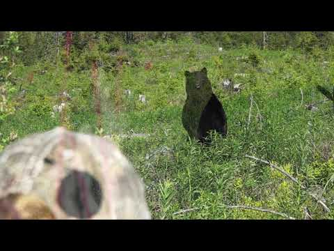 2019 The Choice – Show 5 – BC Spot & Stalk Black Bears with Trophy West, part 2