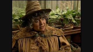 Harry Potter And The Chamber Of Secrets - Miriam Margolyes Short Interview