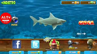 Hungry shark fish feast shell location