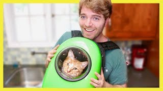 TESTING WEIRD CAT PRODUCTS 2