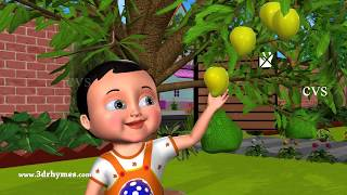 Five Little Mangoes Counting Song - 3D Animation Nursery Rhymes for Children