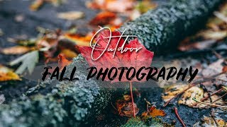 Fall Photography Outdoor Shooting... Well At Least Half Of It!