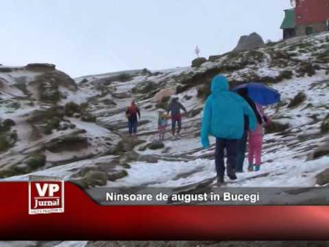 Ninsoare de august în Bucegi