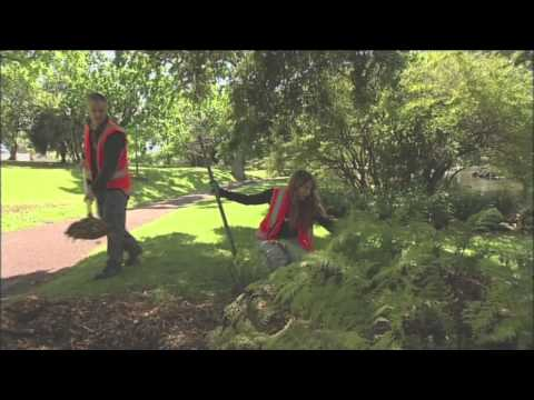 Just the Job - A Career in Amenity Horticulture