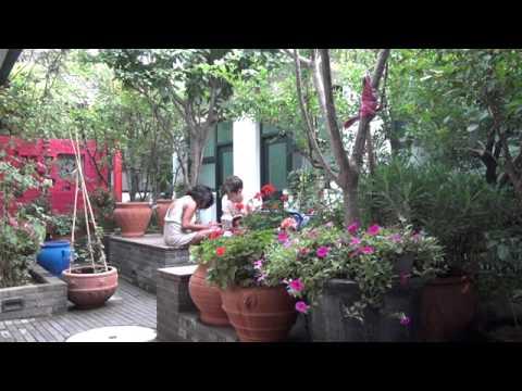 Video of Peking Yard Hostel