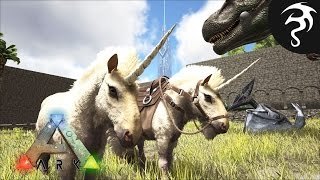 BEST PLACE TO FIND EQUUS & OVIS?? A PERFECT UNICORN TAME! - Ep18 - Road to Tek Tier
