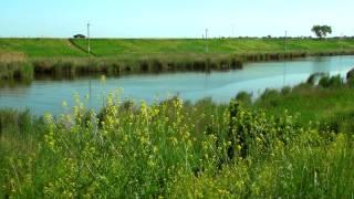 Отдых на пролетарском водохранилище ростовская область