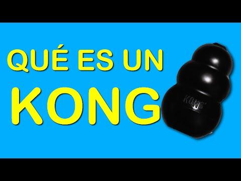 Qué es un Kong para perros y cómo se utiliza