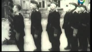 Преступления и наказания. ( Русская дивизия SS. РОНА)