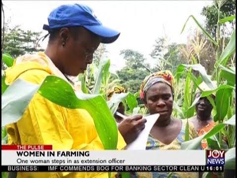 Women in Farming - The Pulse on JoyNews (28-8-18)