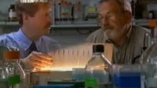 Horizon 2000 - Supervolcanoes Part 4