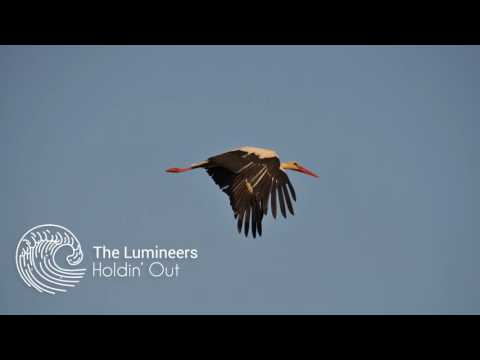 The Lumineers - Holdin' Out (Storks Soundtrack)