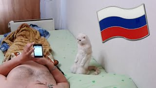 Cat Stands for Russian National Anthem