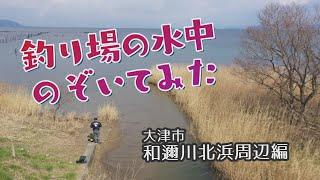 釣り場の水中のぞいてみた「和邇川北浜周辺編」