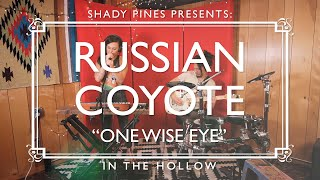 In the Hollow: Russian Coyote