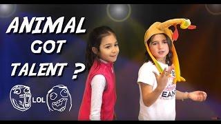 animal got talent?