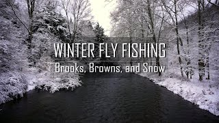 Winter Fly Fishing | Brooks, Browns, and Snow