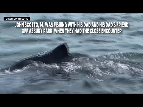 Whale Surprises 14-Year-Old On Fishing Trip