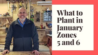 What seedlings to start in January in Zones 5 and 6 - January Garden Planting Guide
