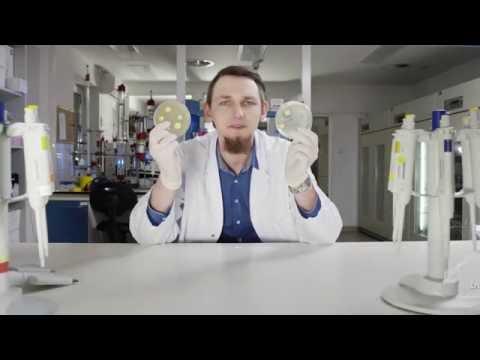 Leczenie przewlekłego zapalenia gruczołu krokowego Ufa