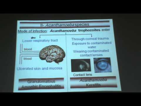 Biology ng mga parasito halaman
