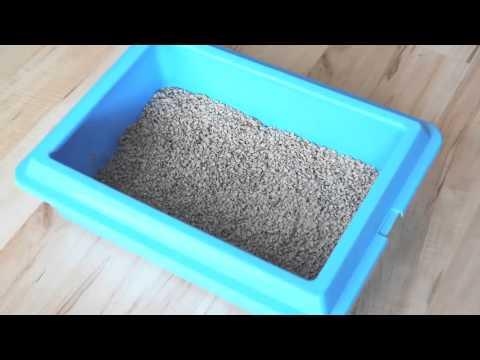 Gamot worm mula Sharpey