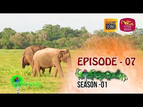 Sobadhara | Season - 01 | Episode 07 | Sobadhara Rupavahini