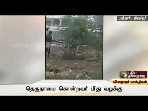 Man-booked-for-killing-stray-dog-in-Tirupur
