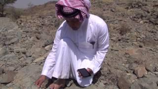 شاهد واستمع إلى قصة البطل الشنفرى الأزدي تحقيق الدكتور عيد اليحي