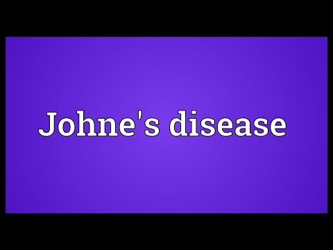 Video Johne's disease Meaning
