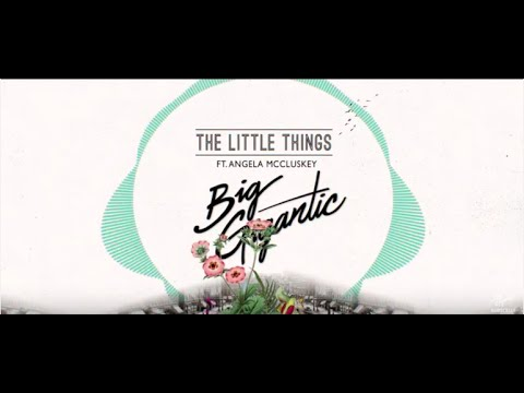 The Little Things (Song) by Big Gigantic and Angela McCluskey