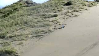 preview picture of video 'Boogie boarding down sand dunes at Castlepoint'