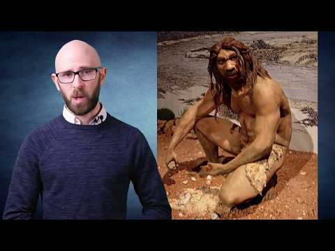 10 Scary Animals Cavemen Lived With