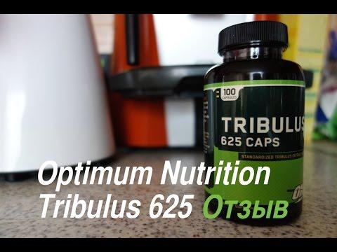 Отзыв о трибулус на примере Optimum Nutrition Tribulus 625