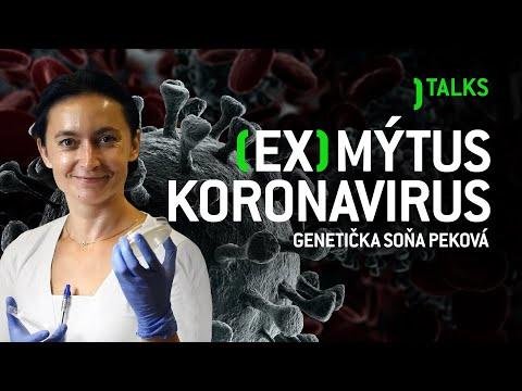 Papilloma virus alla vescica