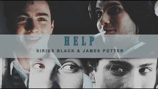 ● Sirius Black & James Potter   Help