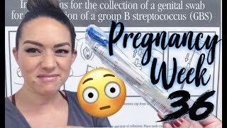 GROUP B STREP TEST + My Experience   Pregnancy Week 36