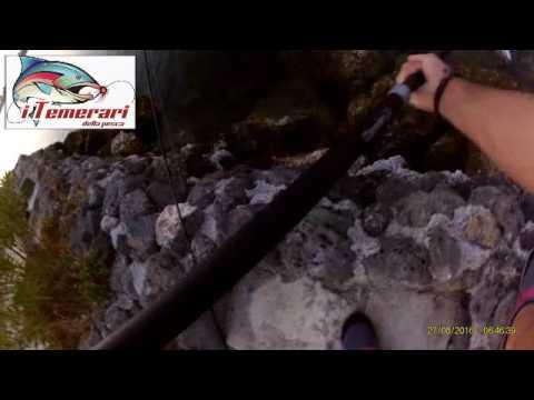 La pesca in terra affronta per impigliarsi di una carpa