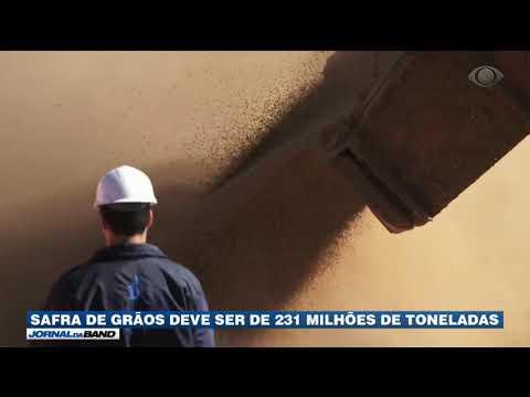 Safra de grãos deve ser de 231 milhões de toneladas