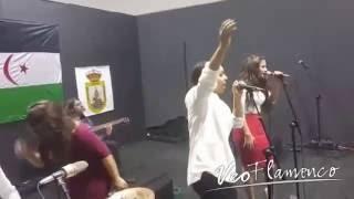 Zaira Ocaña - puro dolor (de Luis Fonsi) | VEOFLAMENCO
