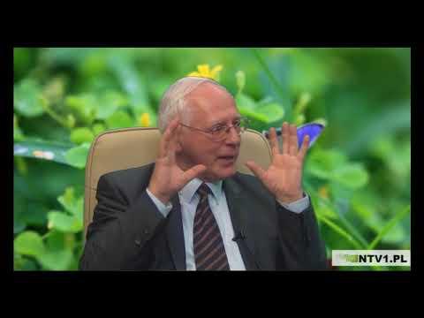 Odżywianie po wymianie stawu biodrowego